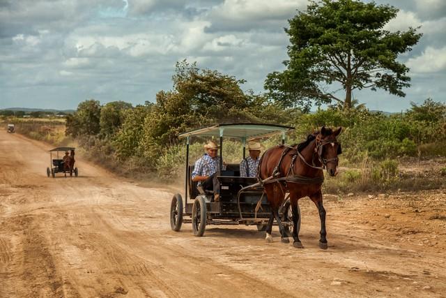 at arabası, modern taşıt