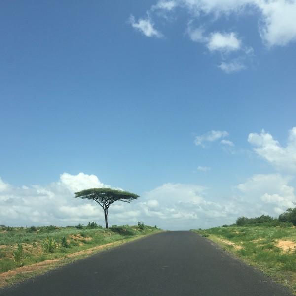 etiyopya turu, etiyopya gezisi