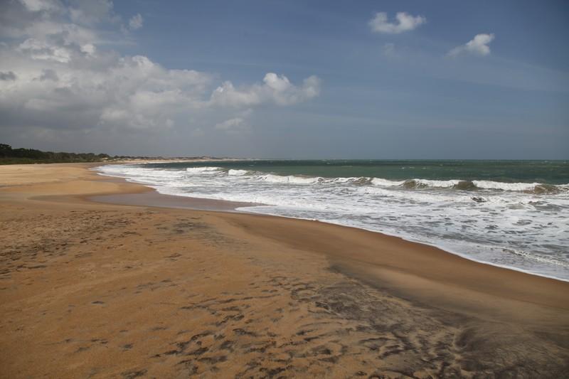 yala milli parkı, tsunami